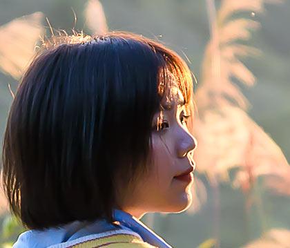 紅葉 香港